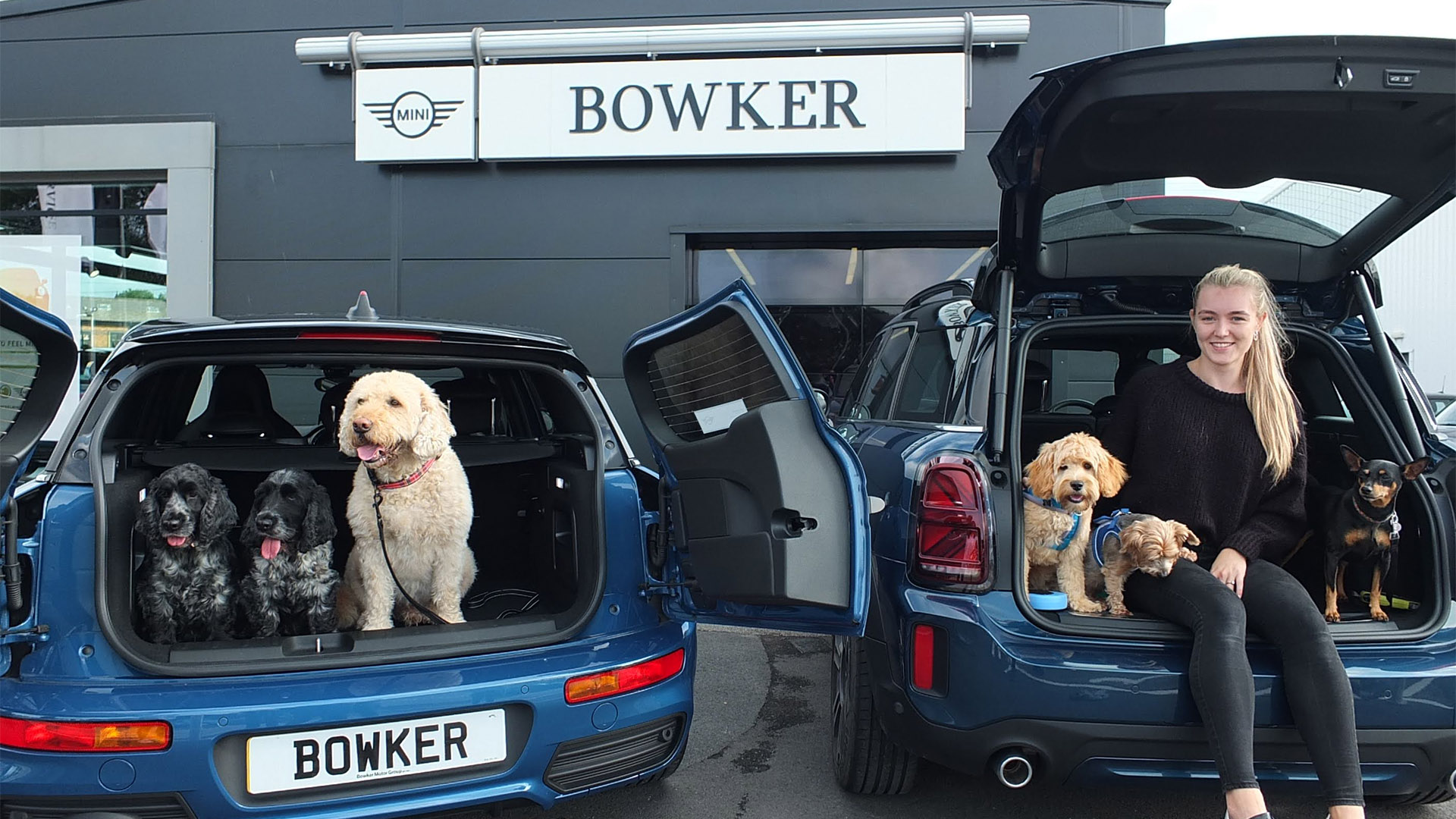Bowker MINI Backs UK Mission to Become an Officially Dog-Friendly Car Retailer with International Dog Day Celebration
